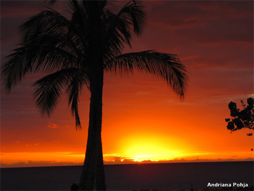 Hawaiian Sunset by Andriana Pohja