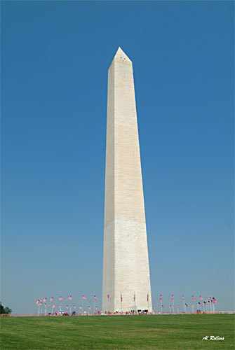 Washington Monument by Albert Rollins