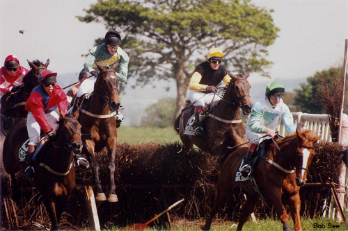 Irish Point-to-Point Race by Bob See
