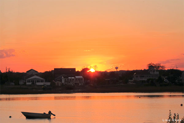 Plum Island Sunset by Lisa Shea