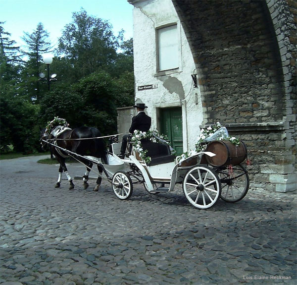 Marriage Carriage by Lois Elaine Heckman
