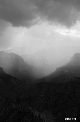 Canyon Rain by Dan Florio