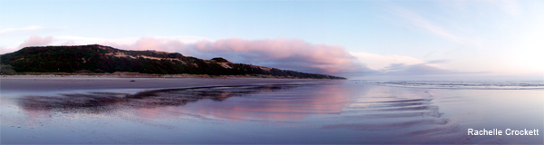 Panoramically Pink by Rachelle Crockett