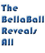BellaBall Magic 8 Ball