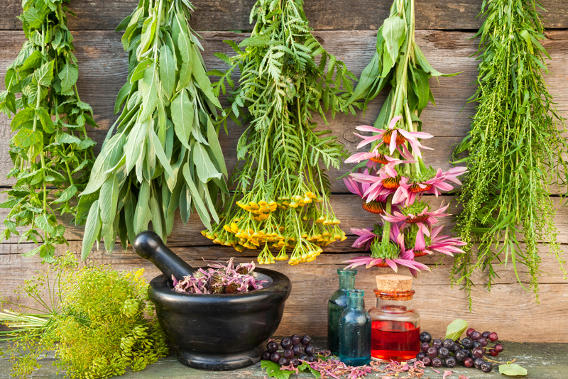 Quit Smoking With These Great Herbs