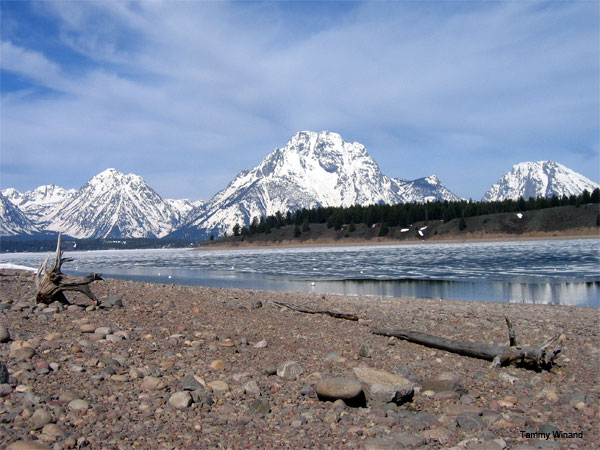 Teton Winter by Tammy Winand